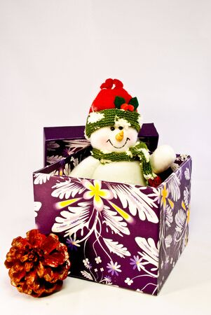 A toy snowman popping out of a purple gift box and a pine cone next to it photo