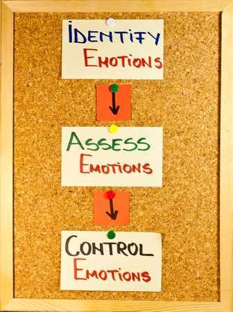 emotional intelligence: Emotional intelligence stages written on post-it notes on a wooden board Stock Photo