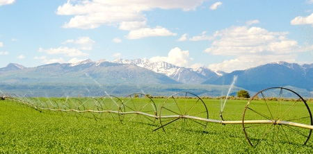 Irrigation System on Farm with San Juan Mountains in Background Stok Fotoğraf