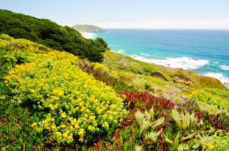 La costa de California a lo largo de la Ruta Estatal 1, con Punto Sur Historic Park en el fondo