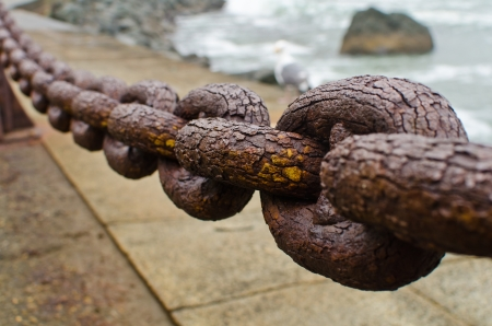rusty chain: A section of rusty chain