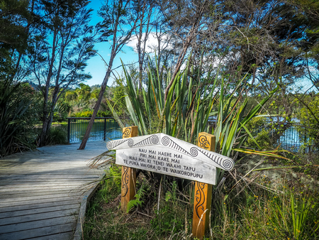 Te Waikoropupu Springs in Golden Bay on NZs South Island. (The English translation of the sing is the crystal clear river)