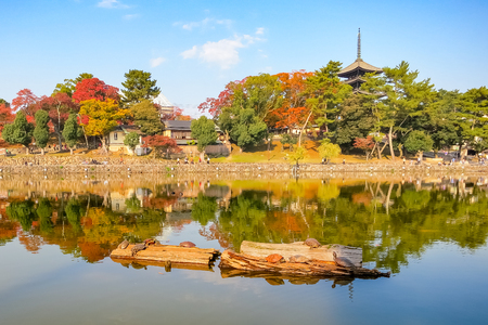 Sarusawaike Pond and The KohfukuJi temple with autumn foliage in Nara, Japan