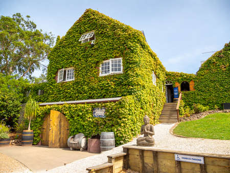 Auckland, New Zealand - Feb 14, 2020: Stonyridge Vineyard located on Waiheke Island is the ideal north facing site to ripen and produce a world class Bordeaux style red wine.