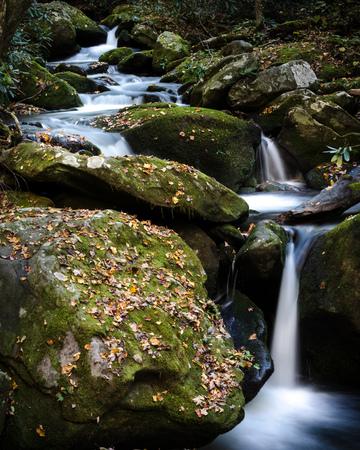 Creek cascades through moss covered rocks in autumn.