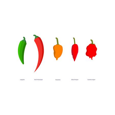 Illustrazione vettoriale di Jalapeno, Red Hot Chili Pepper, Habanero, Ghost Pepper, Carolina Reaper.