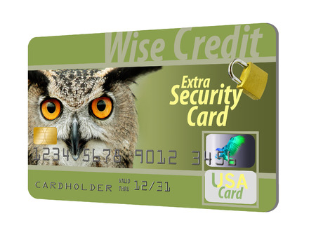 A wise owl stare out from a credit card that is loaded with security features including holograms, EMV chip and more. It is wise to be safe.