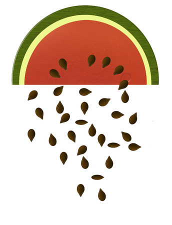 Watermelon slices are the subject of this color illustration. A slice of melon is seen isolated on a background. 版權商用圖片