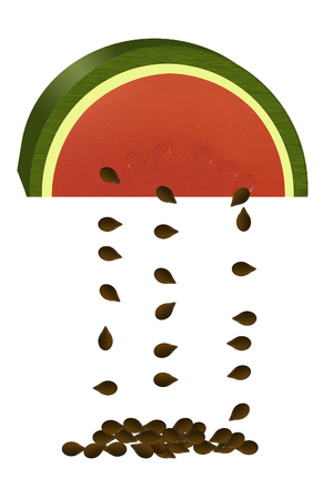 Seedless watermelons are the subject of this color illustration. A slice of melon and falling seeds are  seen isolated on a background. 스톡 콘텐츠