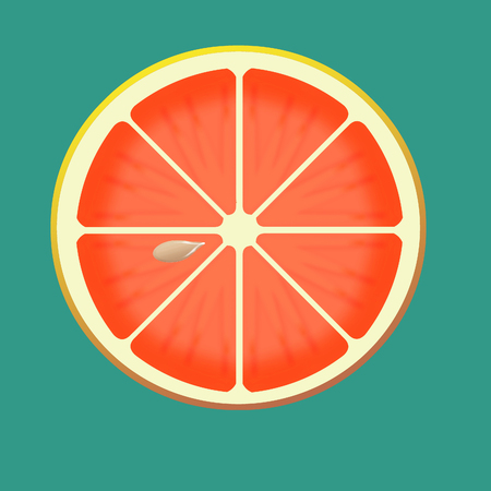 Here is an illustration showing citrus fruit slices isolated on a blue background.
