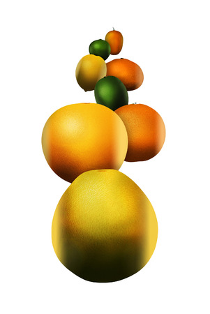 Eight popular citrus fruits are pictured. These include: pomelo, grapefruit, orange, lime, lemon, tangerine, key lime and kumquat. This is an illustration. Stok Fotoğraf