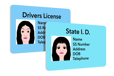 Here is an illustration of a state identification card that is used for youngsters. A young girls ID is seen next to her moms drivers license.
