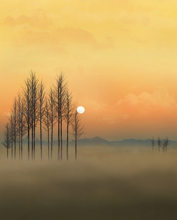 A golden sky, fog, trees and a sun near the horizon is in this dramatic scene of  a natural setting.  This is an illustration