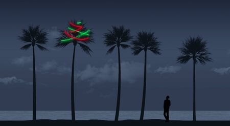 A palm tree is decorated for Christmas on a beach in a tropical climate. Strings of lights glow in the night. 版權商用圖片