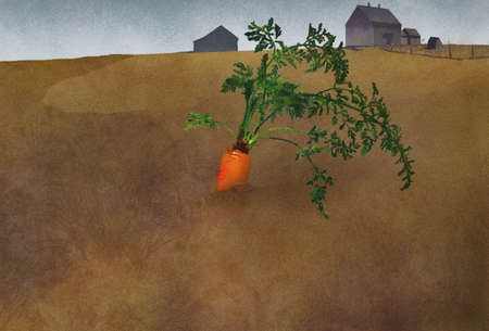 An organically grown carrot is seen in the ground in a rural setting with vintage barns in this watercolor/digital illustration.