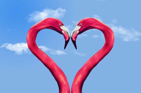 Flamingos' curving necks form the shape of a heart