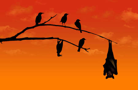 A bird imitates a bat and hangs from a branch upside down in this illustration about imitation.