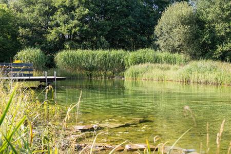 revitalize: Pond with a footbridge