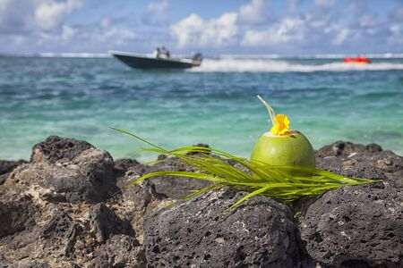 Coconut abt the beach - background a motorboat  photo