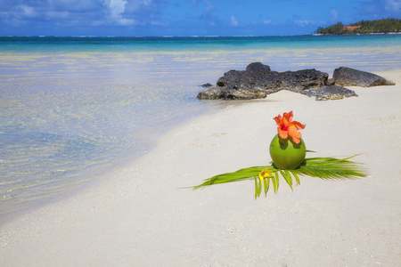 belle: Coconut at beach of Mauritius, Belle Mare at paradise island