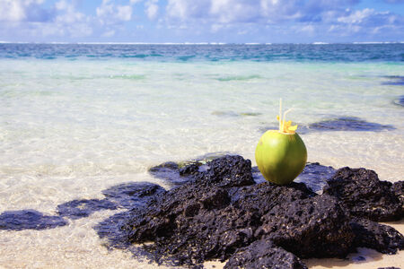 Coconut at the beach of Mauritius - Africa   photo