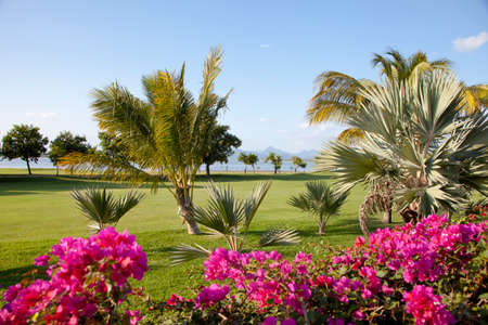 mauritius: Golf resort in a beautiful nature at the island of Mauritius  you see the mountains of the island