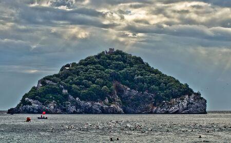 swimm: island, the island swimm