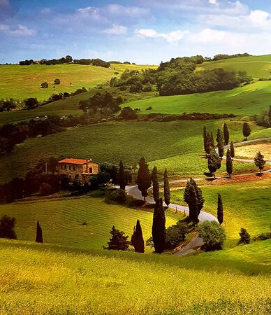 Tuscan hills in the spring