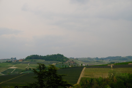 monforte dalba with its medieval village, its ancient churches and the hills where the vines that give life to the famous Piedmontese wine reign supreme