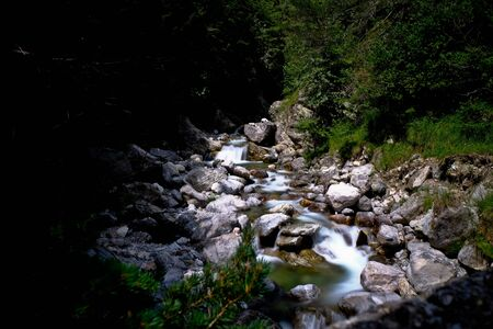 mountain stream in the woods with silky effect during a summer day