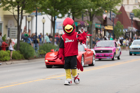 Frankenmuth, Michigan, USA - June 10, 2018 Man dress up as a cardenal the mascot from  Saginaw Valley State University at the Bavarian Festival Parade. Editöryel