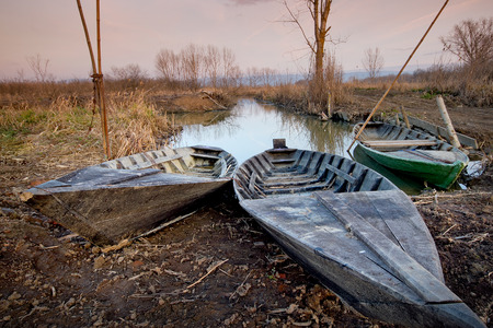 marshes: Marshes Nature Reserve Fucecchio - Tuscany, Italy - for birdwatchers, the area is a pleasant destination for hiking, horseback riding and cycling
