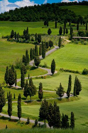 podere: Val dOrcia, Siena, mountain bike excursion in the Tuscan hills - winding avenue of Monticchiello seen from Podere La Piana
