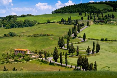 Val dOrcia, Siena, mountain bike excursion in the Tuscan hills - winding avenue of Monticchiello seen from Podere La Piana