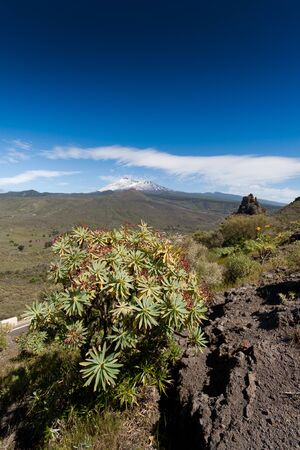 Tenerife, Espana - Natural Park of Teide with the great Volcano