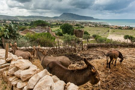 erice: Custonaci Trapani Sicily - Mangiapane caves populated as early as the Upper Paleolithic Stock Photo