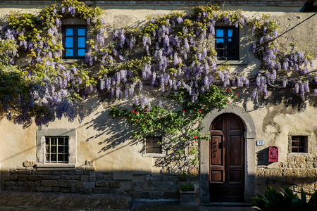 GUARDISTALLO, Pisa, Italy - In the Castle area residences with wisteria, windows and doors Editorial