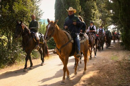 BOLGHERI, TUSCANY: SEPTEMBER 27, 2008 - A horse between forests and villages organized by the Province of Leghorn, the Tuscany Region and some of the Communes of the coast. Horse riding trails to the boundaries of the Province of Grosseto, in the photo Ol