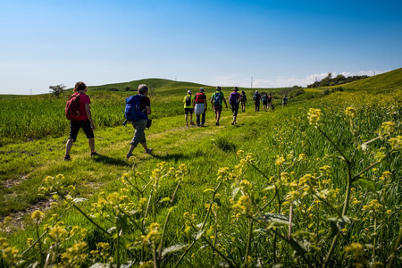 ASCIANO, TUSCANY, Italy - April 25, 2018: trekking, Asciano with ravines, farms in a harsh landscape, arrived in Serre di Rapolano known for the travertine quarries, but from the medieval heart. Unknown people walking along the famous white roads