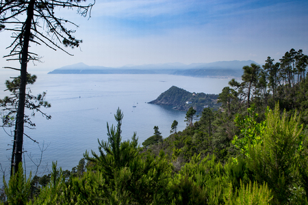 SESTRI LEVANTE, GENOA, ITALY - view of the promontory of Portofino and peninsula of Sestri Levante, from the path that leads to Punta Manara, through the pine forest and the strawberry tree plants, Liguria, Italy. Stock Photo