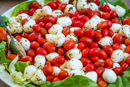 Processed foods for aperitifs, mozzarella morsels from Campania and tomatoes compounds and preparations for tastings