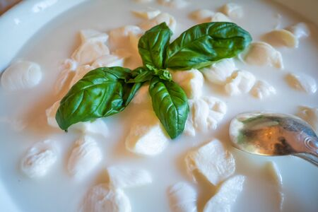 Processed foods for aperitifs, mozzarella morsels from Campania and basil compounds and preparations for tastings