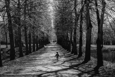 Back view of a young child running free on a boulevard with tall trees bears freedom, fun and liberty concept. A kid running free on an alley conveys carefree and childhood lighthearted feelings Stock fotó