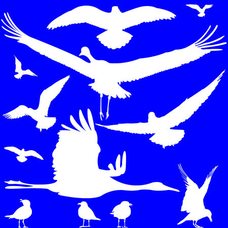 squawk: white birds silhouettes over blue, abstract art illustration Illustration