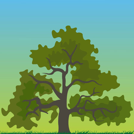 tree cartoon,  Vector