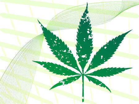 中毒性の: 薬物乱用の概念