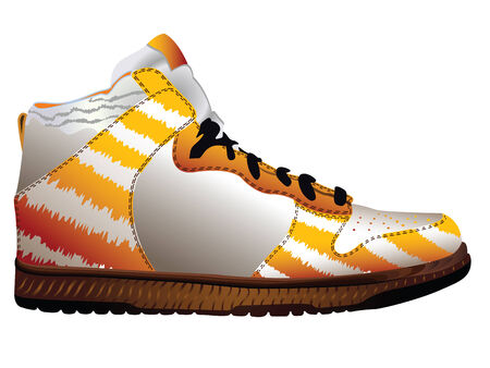 sport shoe over white background, abstract  art illustration Vector