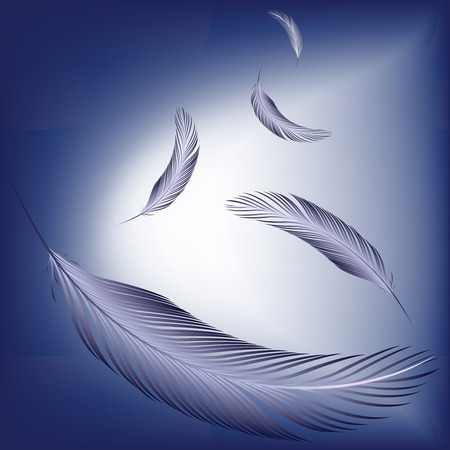 a feather: feathers in the wind, abstract vector art illustration