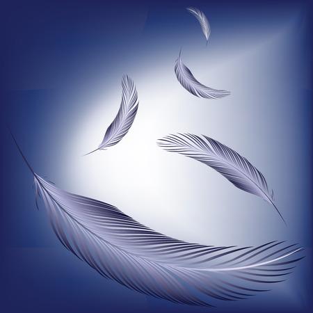 feather white: piume al vento, illustrazione di arte astratta vettoriale