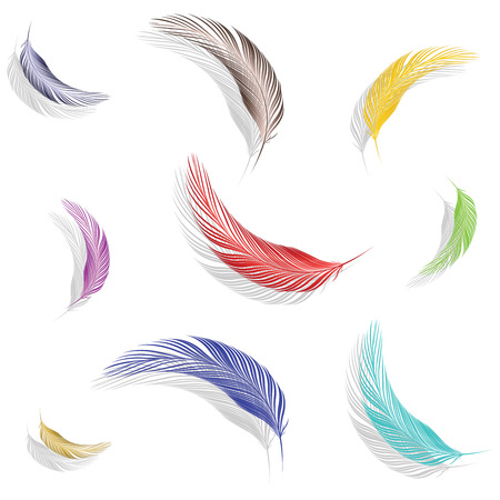 colored feathers collection against white background, abstract vector art illustration Stock Vector - 8384272